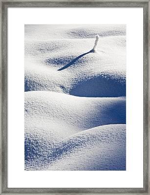 Shapes Of Winter Framed Print