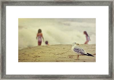 Share The Beach  Framed Print by JAMART Photography