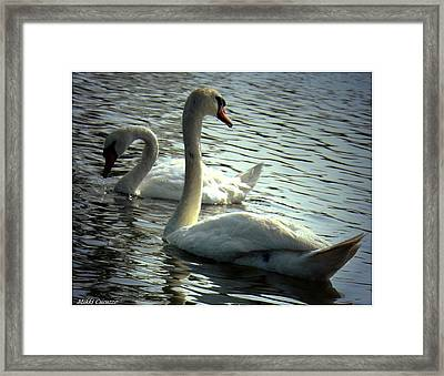 Sharing A Moment Framed Print