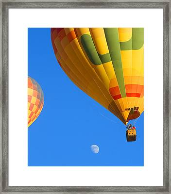 Sharing The Sky Framed Print