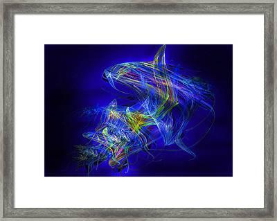Shark Beauty Framed Print by Michael Durst