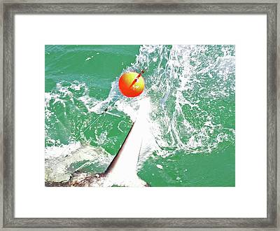 Shark Framed Print by Charles Harden
