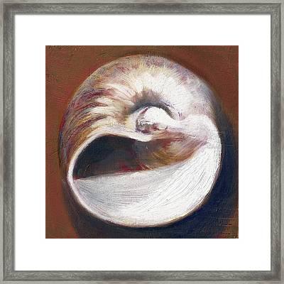 Shark Eye Moon Shell Framed Print