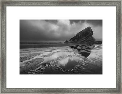 Shark Fin In Black And White Framed Print by Debra and Dave Vanderlaan