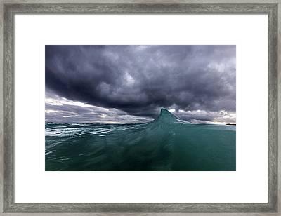 Shark Fin Soup Framed Print