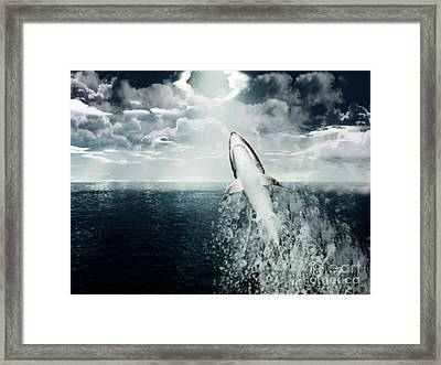 Shark Watch Framed Print by Digital Art Cafe