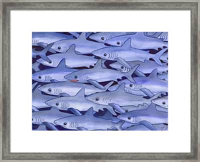 Sharks Framed Print by Catherine G McElroy