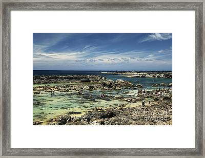Sharks Cove Framed Print by Vince Cavataio - Printscapes