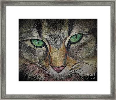 Sharna Eyes Framed Print