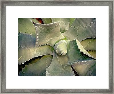 Sharp Embrace 8 Framed Print