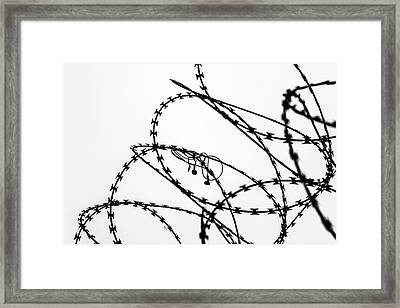 Sharp Sound Framed Print