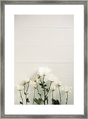 Shasta Daisies Cropped 2 Framed Print