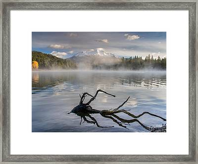 Shasta Mists And Morning 3 Framed Print by Greg Nyquist