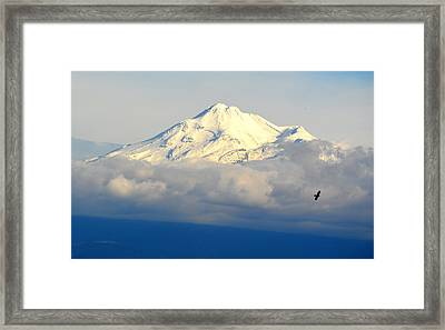 Shasta Near Sunset Framed Print by AJ Schibig