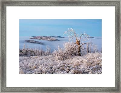 Shattered Framed Print by Andrew Gordon