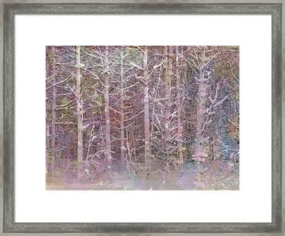 Shattered Forest Framed Print by Linda Dunn