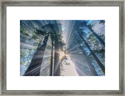Framed Print featuring the photograph Shazam by Patricia Davidson