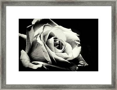 She Blooms Framed Print