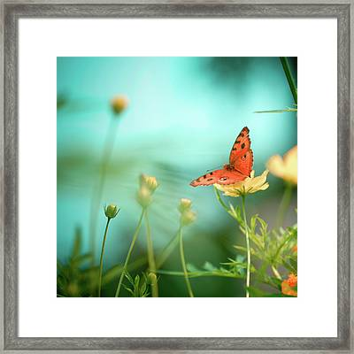 She Rests In Beauty Framed Print