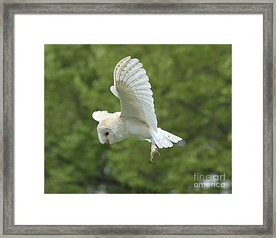 She Sees Sound Framed Print