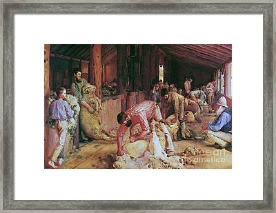 Shearing The Rams Framed Print by Pg Reproductions