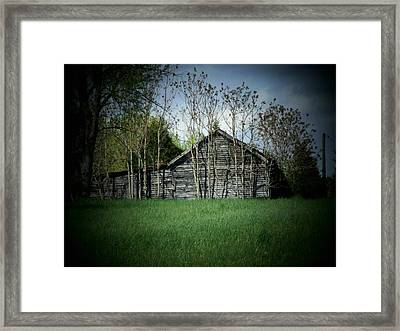 Shed And Trees Framed Print by Michael L Kimble