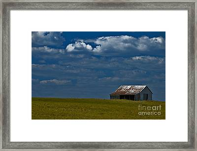 Shed In The Light Framed Print by Susan Yates