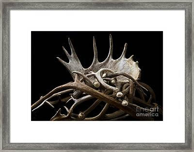 Sheds Framed Print by Edward R Wisell
