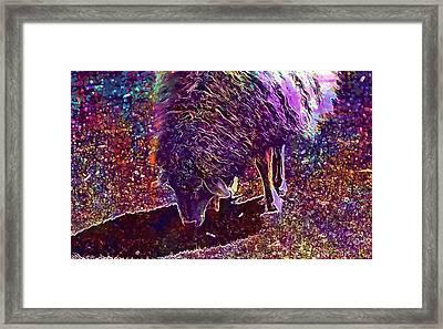 Framed Print featuring the digital art Sheep Animal Animals Wool Meadow  by PixBreak Art