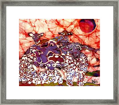 Sheep At Sunset Framed Print