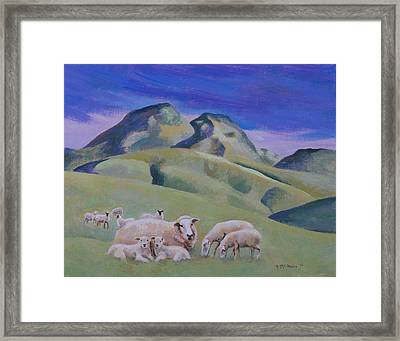 Sheep At Sutter Buttes Framed Print