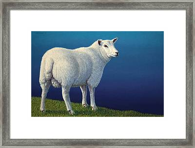 Sheep At The Edge Framed Print by James W Johnson