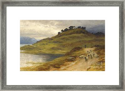Sheep Droving In A Landscape Framed Print by MotionAge Designs