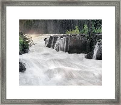Sheep Falls Framed Print