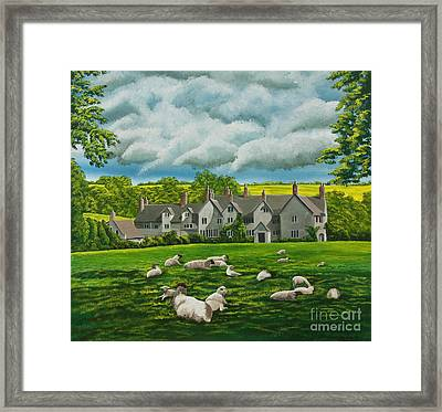 Sheep In Repose Framed Print by Charlotte Blanchard