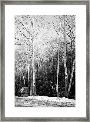 Sheep Meadow 3 Framed Print by Keith Conrey