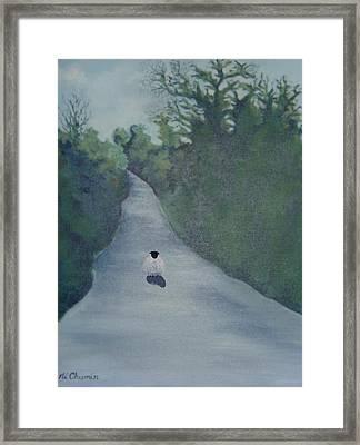 Sheep On The Irish Country Road Framed Print by Elaine Cummins