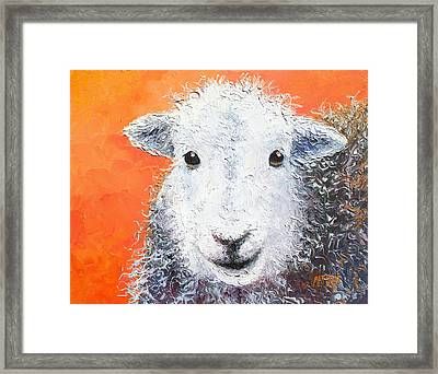 Sheep Painting On Orange Background Framed Print by Jan Matson