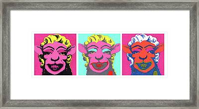 Sheep Triptych Framed Print