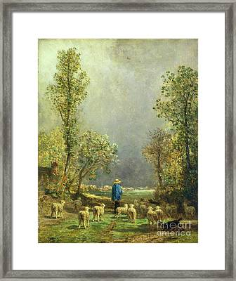 Sheep Watching A Storm Framed Print