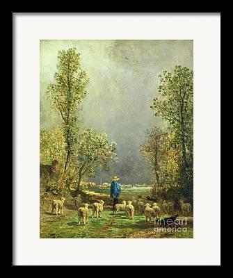 Shephard Framed Prints