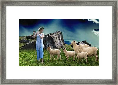 Sheep Whisperer Framed Print