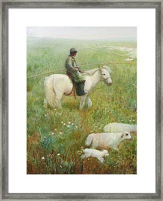 Sheepherder Framed Print