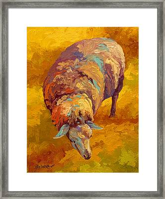 Sheepish Framed Print by Marion Rose