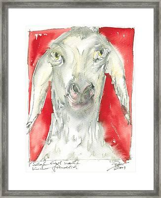 Sheeps Are Not Always Kind .... Framed Print by Joerg Bernhard Klemmer