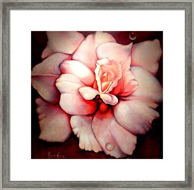 Sheer Bliss Framed Print