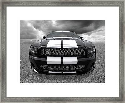 Shelby Thunder Framed Print