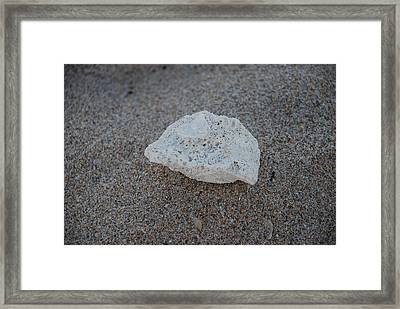 Framed Print featuring the photograph Shell And Sand by Rob Hans