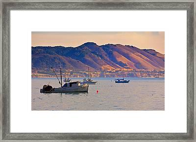 Shell Beach Framed Print by Patricia Stalter