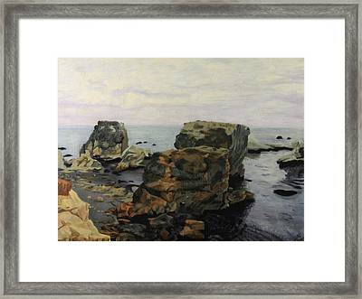 Shell Beach  Framed Print